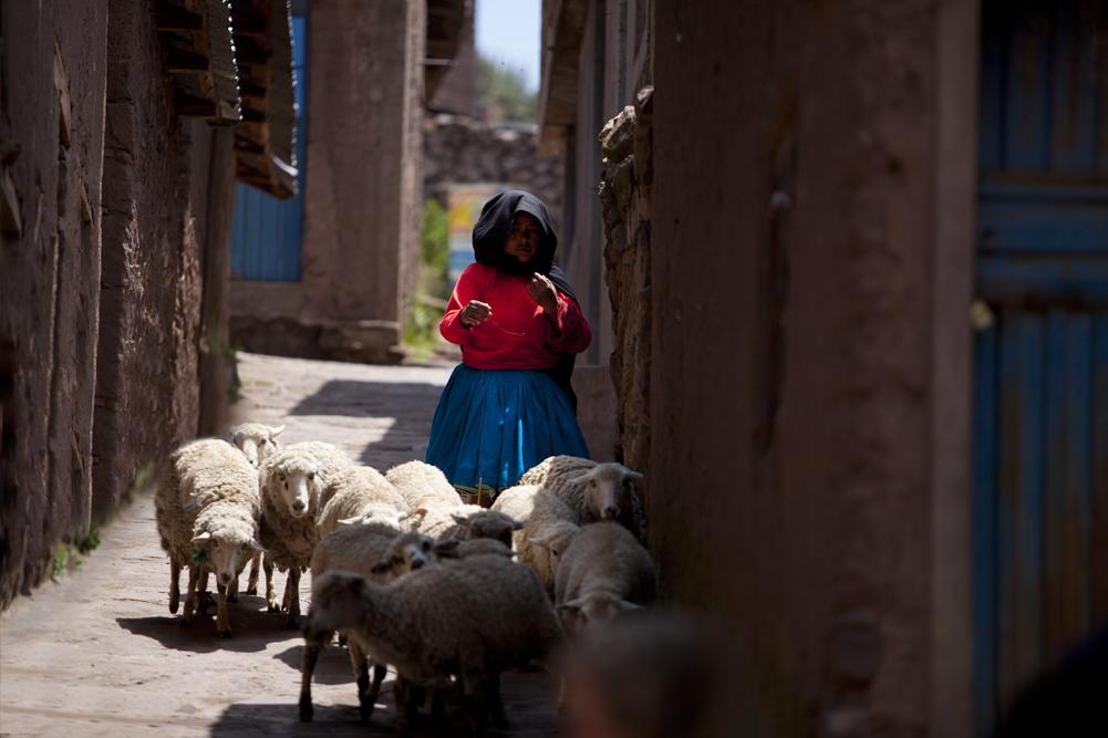 Peru 36
